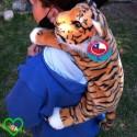 Agrega: Mochila tigre